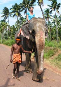 vilde dyr i indien
